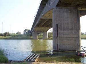 ponte-primosole